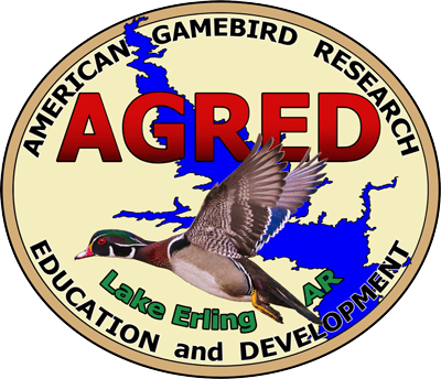 AGRED Foundation